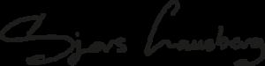 Logo Sjors Lausbberg